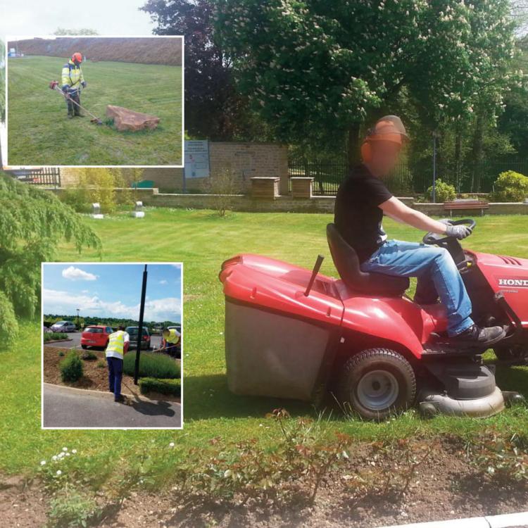 Association ardennaise pour la promotion des handicap s for Association entretien espaces verts